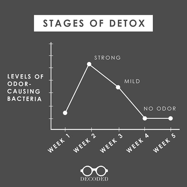 stages of detox