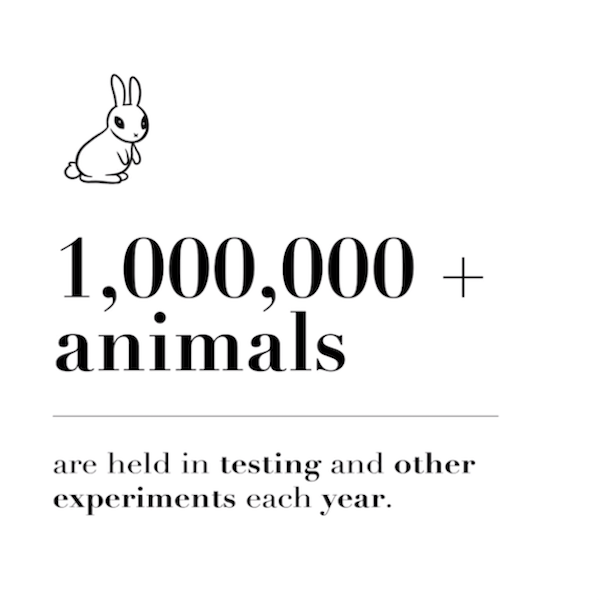 10sec-quickies-animal-testing-bunny