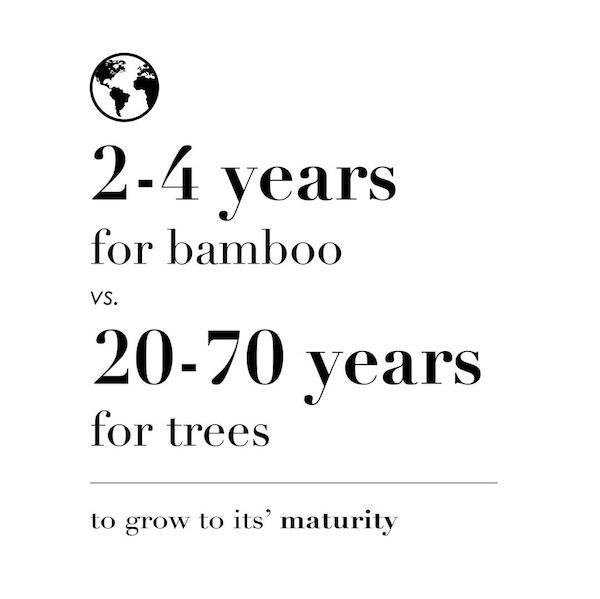 10sec-quickies-trees-vs-bamboo