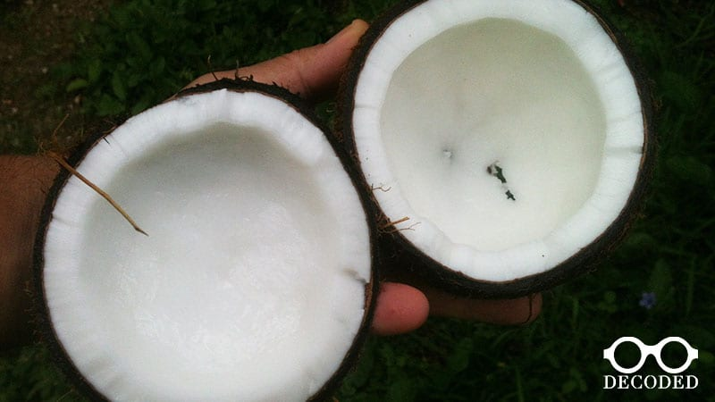 why coconut oil in natural deodorant is a problem